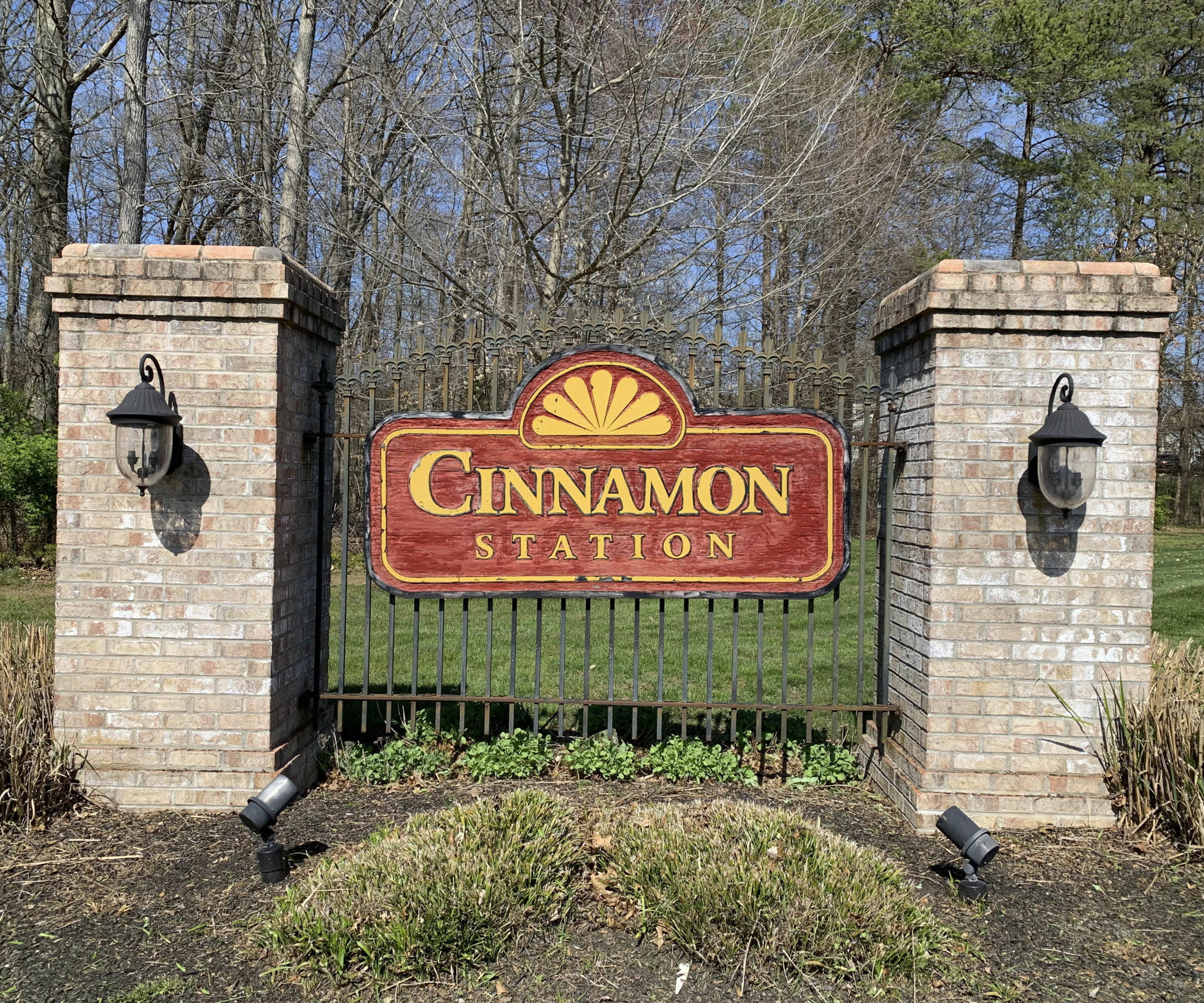 Cinnamon Station Homes for Sale - Team O'Donnell